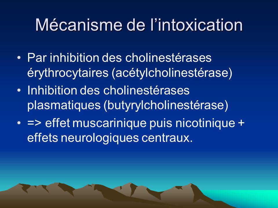 Mécanisme de lintoxication Par inhibition des cholinestérases érythrocytaires (acétylcholinestérase) Inhibition des cholinestérases plasmatiques (butyrylcholinestérase) => effet muscarinique puis nicotinique + effets neurologiques centraux.