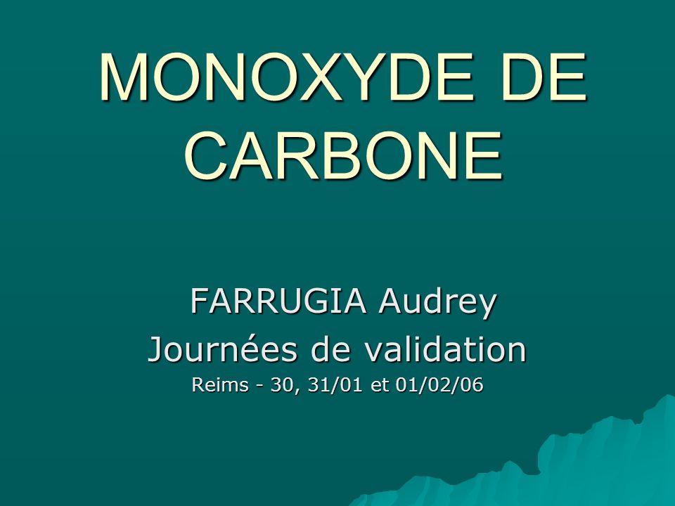MONOXYDE DE CARBONE FARRUGIA Audrey FARRUGIA Audrey Journées de validation Reims - 30, 31/01 et 01/02/06
