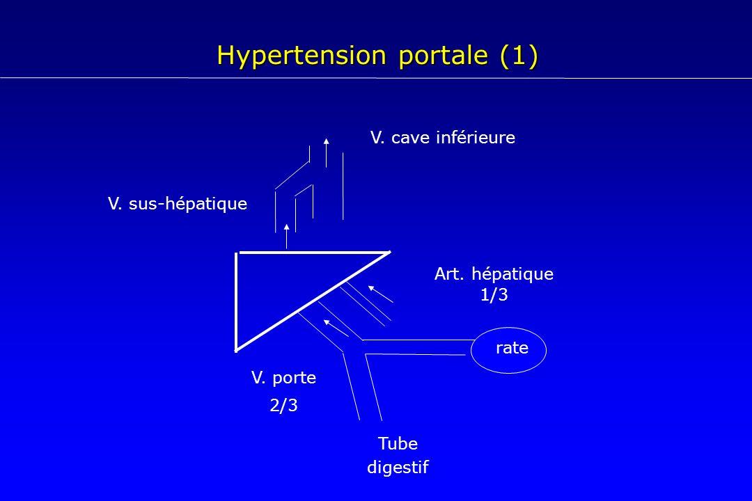 Hypertension portale (1) Art. hépatique 1/3 V. porte 2/3 V. cave inférieure V. sus-hépatique rate Tube digestif