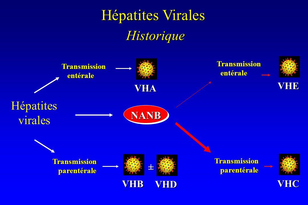 Transmission entérale entérale Transmission parentérale parentérale Hépatites virales Transmission entérale entérale Transmission parentérale parentér