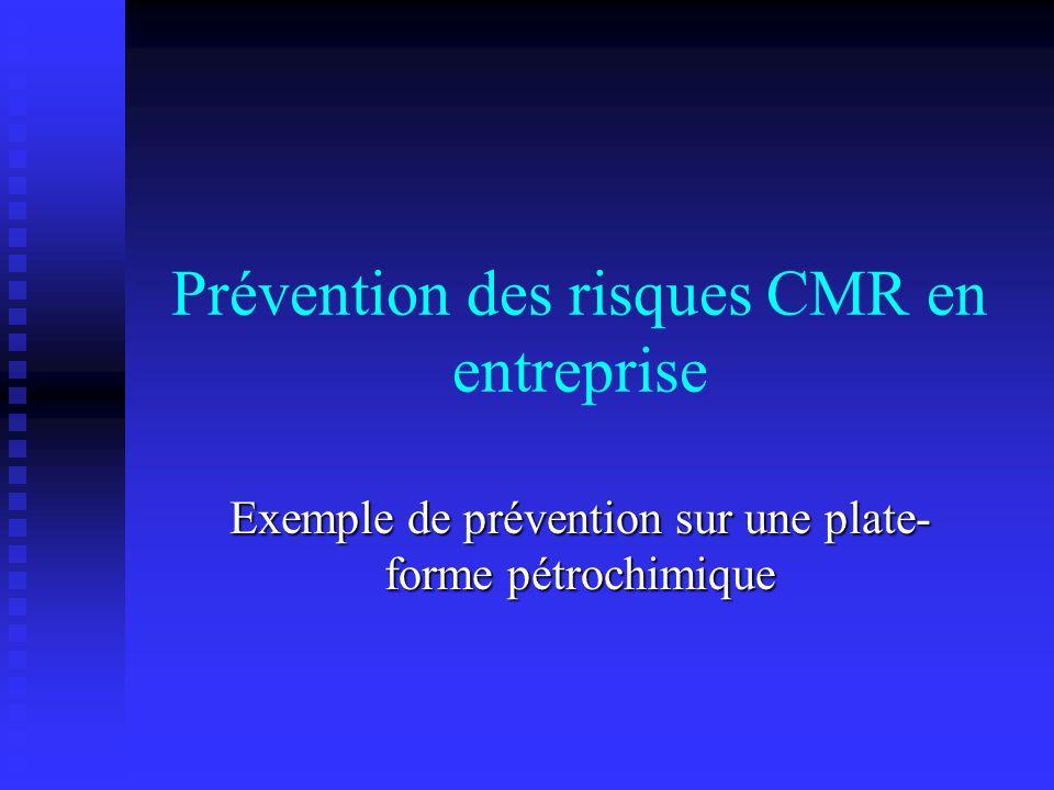 Prévention des risques CMR en entreprise Exemple de prévention sur une plate- forme pétrochimique