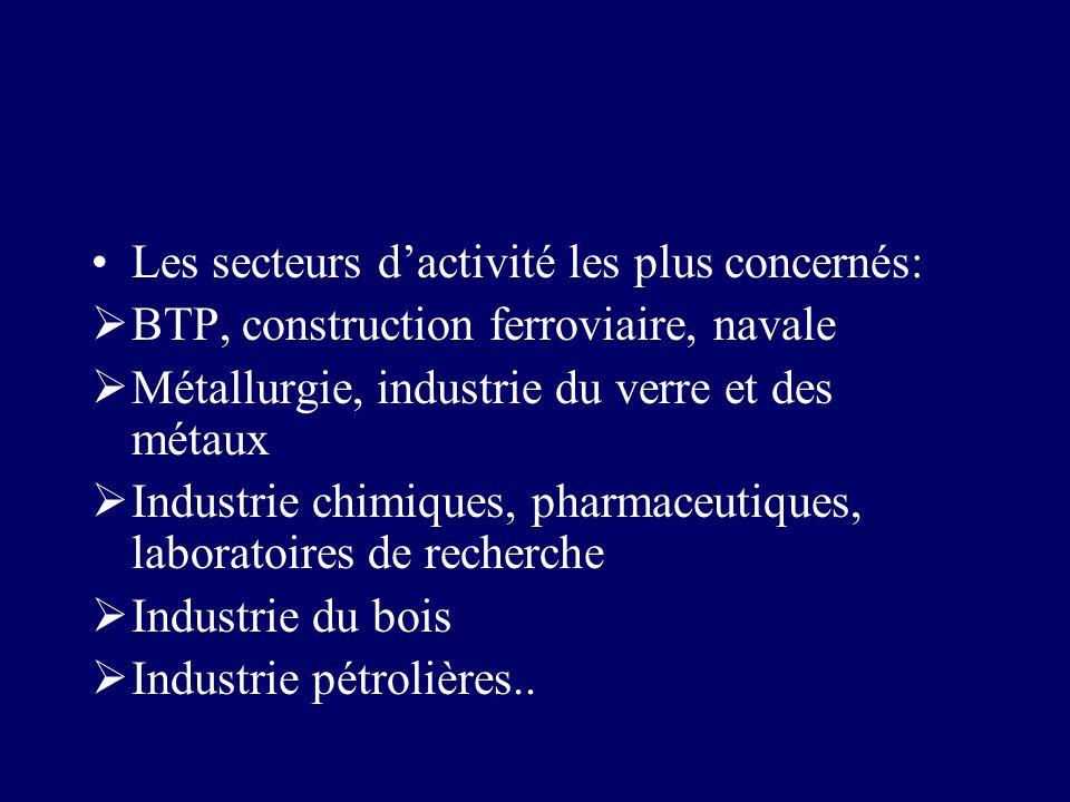 Les secteurs dactivité les plus concernés: BTP, construction ferroviaire, navale Métallurgie, industrie du verre et des métaux Industrie chimiques, ph