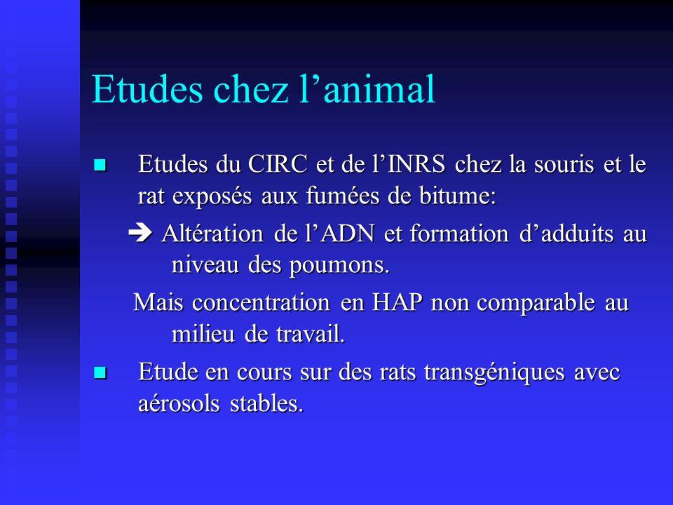 Etudes chez lanimal Etudes du CIRC et de lINRS chez la souris et le rat exposés aux fumées de bitume: Etudes du CIRC et de lINRS chez la souris et le