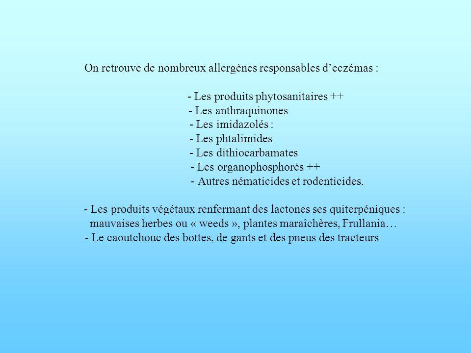 On retrouve de nombreux allergènes responsables deczémas : - Les produits phytosanitaires ++ - Les anthraquinones - Les imidazolés : - Les phtalimides
