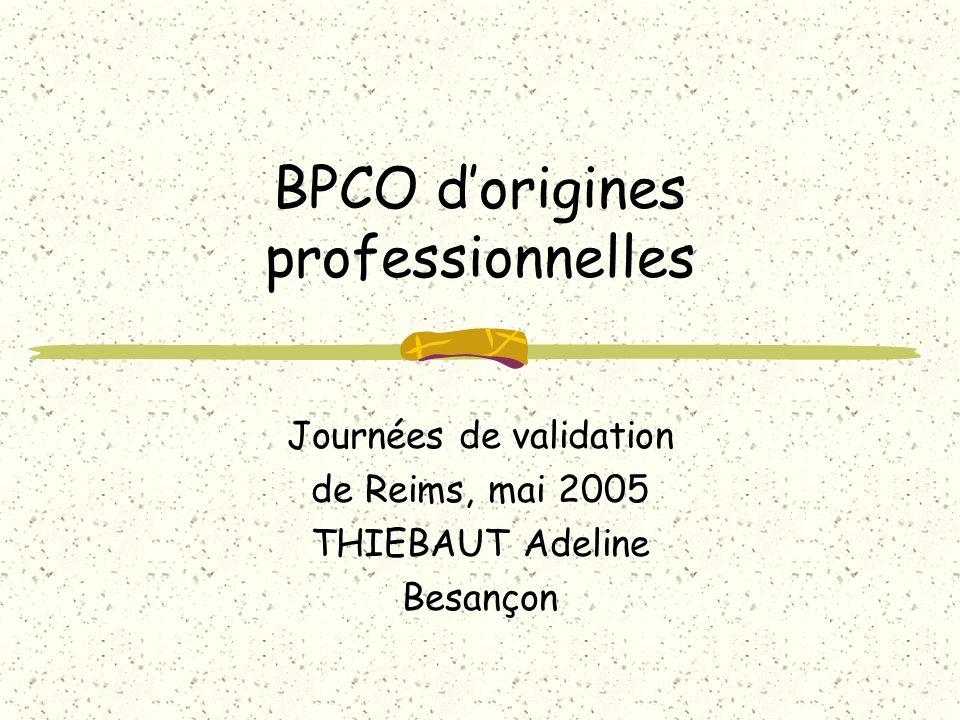 BPCO dorigines professionnelles Journées de validation de Reims, mai 2005 THIEBAUT Adeline Besançon