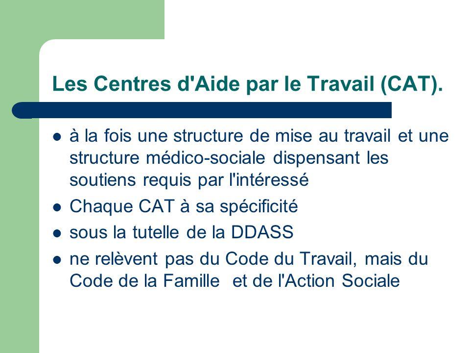 Les Centres d'Aide par le Travail (CAT). à la fois une structure de mise au travail et une structure médico-sociale dispensant les soutiens requis par