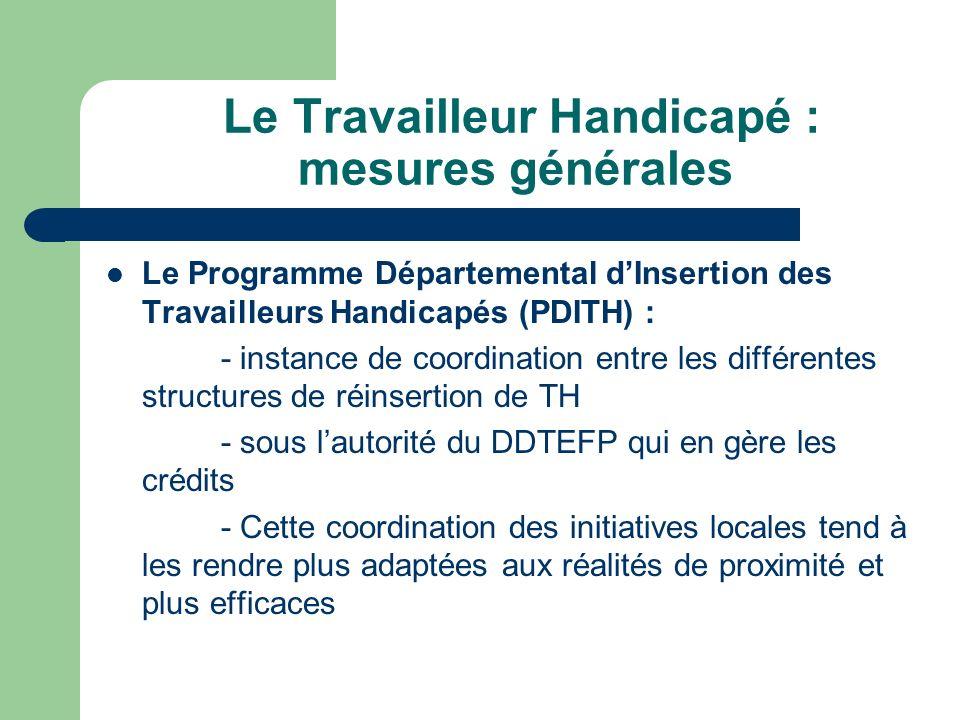Le Travailleur Handicapé : mesures générales Le Programme Départemental dInsertion des Travailleurs Handicapés (PDITH) : - instance de coordination en