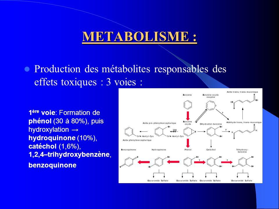 METABOLISME : 2 ème voie : Conjugaison au glutathion Acide S-phénylmercapturique