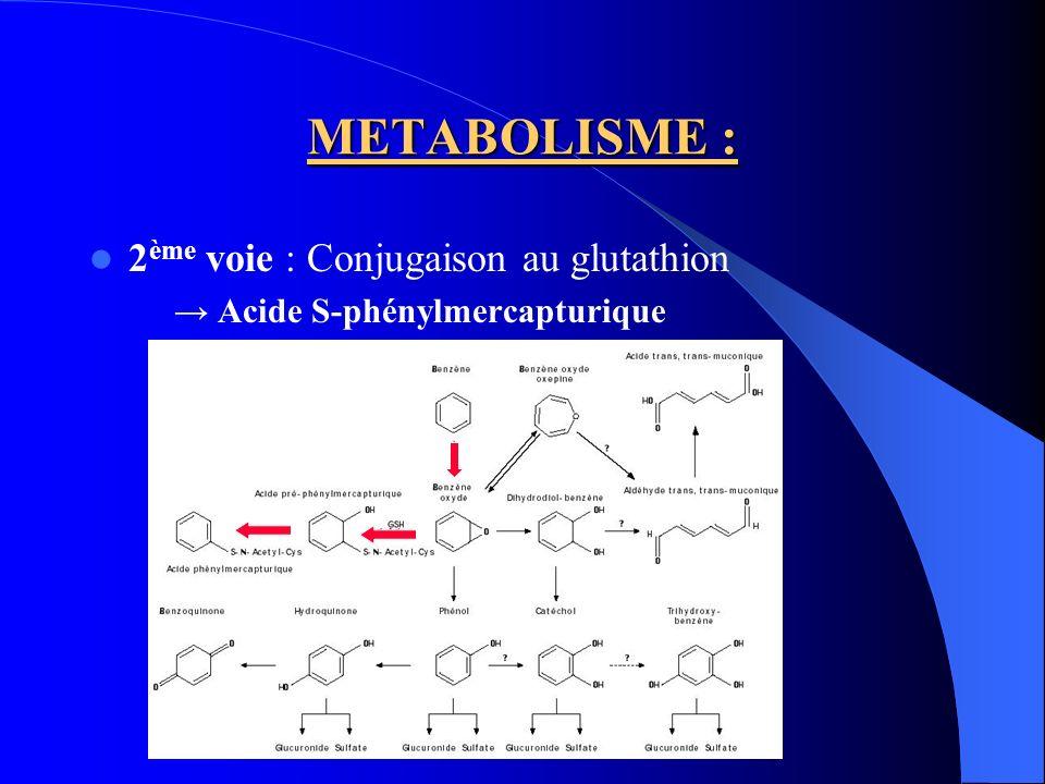 METABOLISME : 3 ème voie : Ouverture du cycle Acide trans, trans-muconique