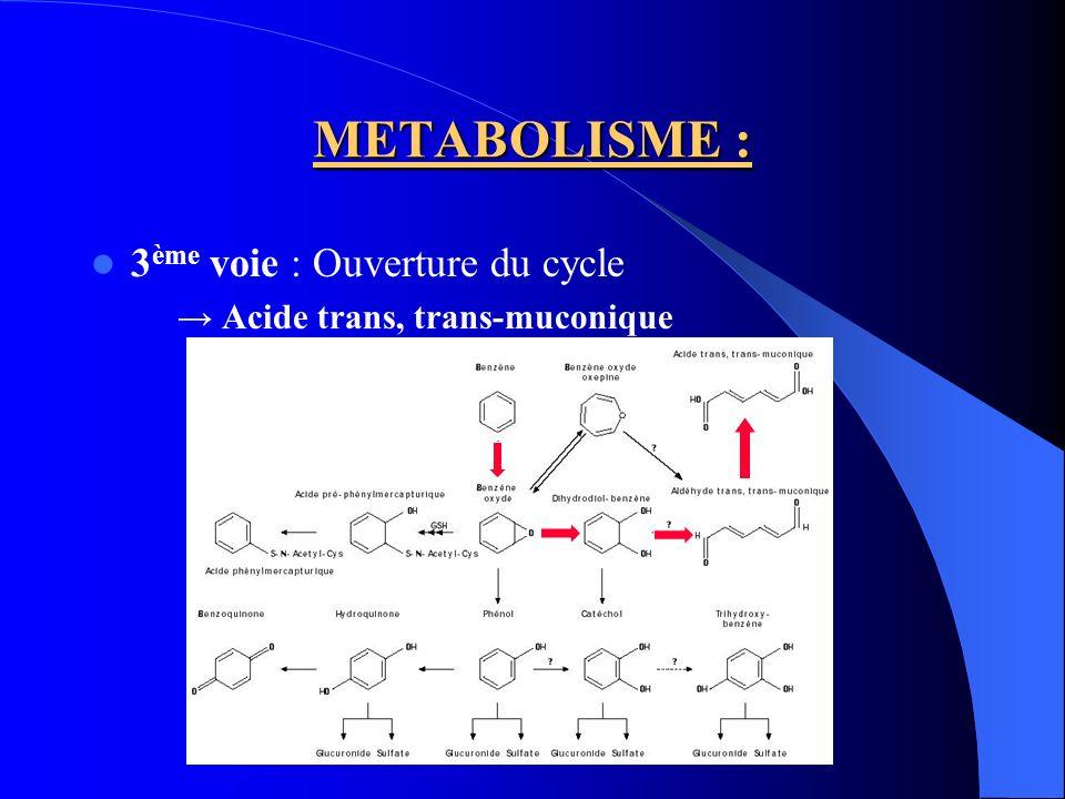 METABOLISME : Elimination dans les urines : – Benzène sous forme inchangée (0,1%) – Acide trans, trans-muconique (2%) – Acide S-phénylmercapturique (<1%) Certaines substances stimulent le métabolisme du benzène : phénobarbital, stéroïdes, trichloroéthylène, éthanol A linverse, le toluène inhibe la transformation du benzène en phénol.