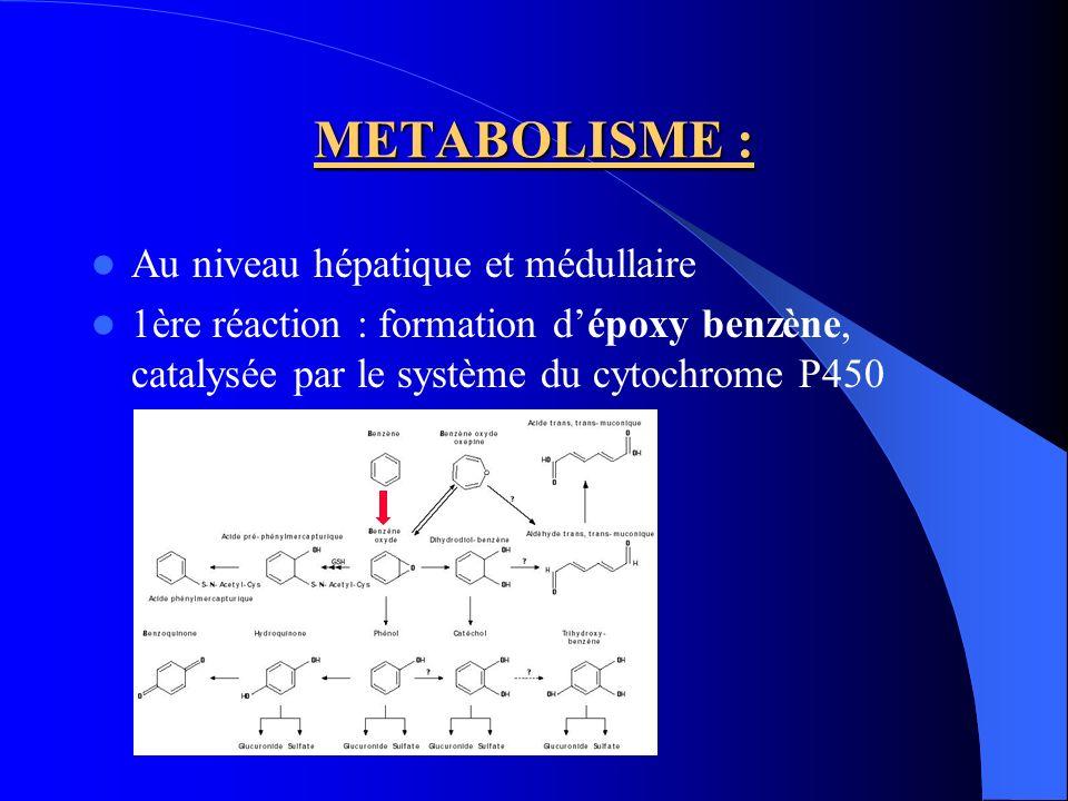 METABOLISME : Production des métabolites responsables des effets toxiques : 3 voies : 1 ère voie: Formation de phénol (30 à 80%), puis hydroxylation hydroquinone (10%), catéchol (1,6%), 1,2,4–trihydroxybenzène, benzoquinone