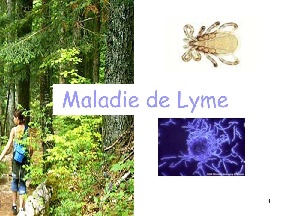 1 Maladie de Lyme