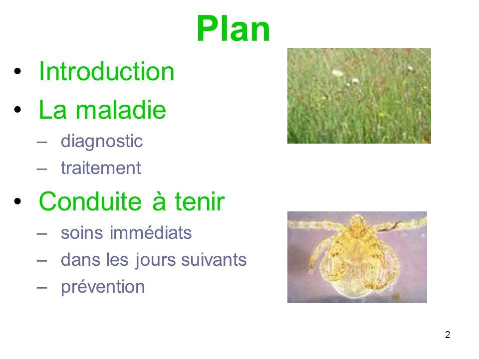 2 Plan Introduction La maladie –diagnostic –traitement Conduite à tenir –soins immédiats –dans les jours suivants –prévention