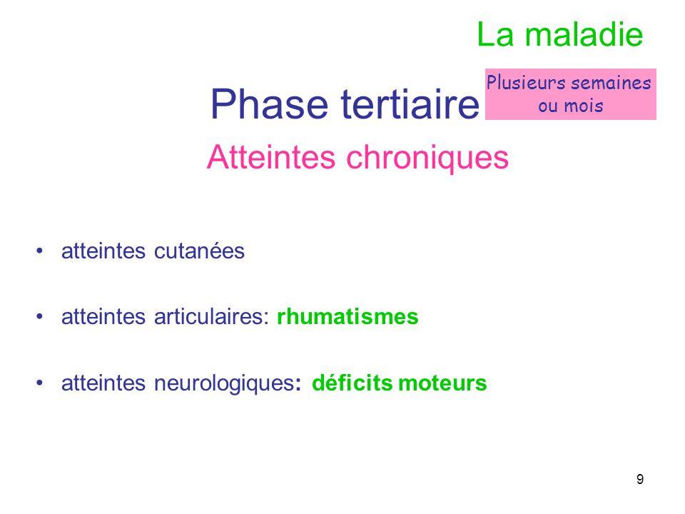 9 La maladie Phase tertiaire Atteintes chroniques atteintes cutanées atteintes articulaires: rhumatismes atteintes neurologiques: déficits moteurs Plu