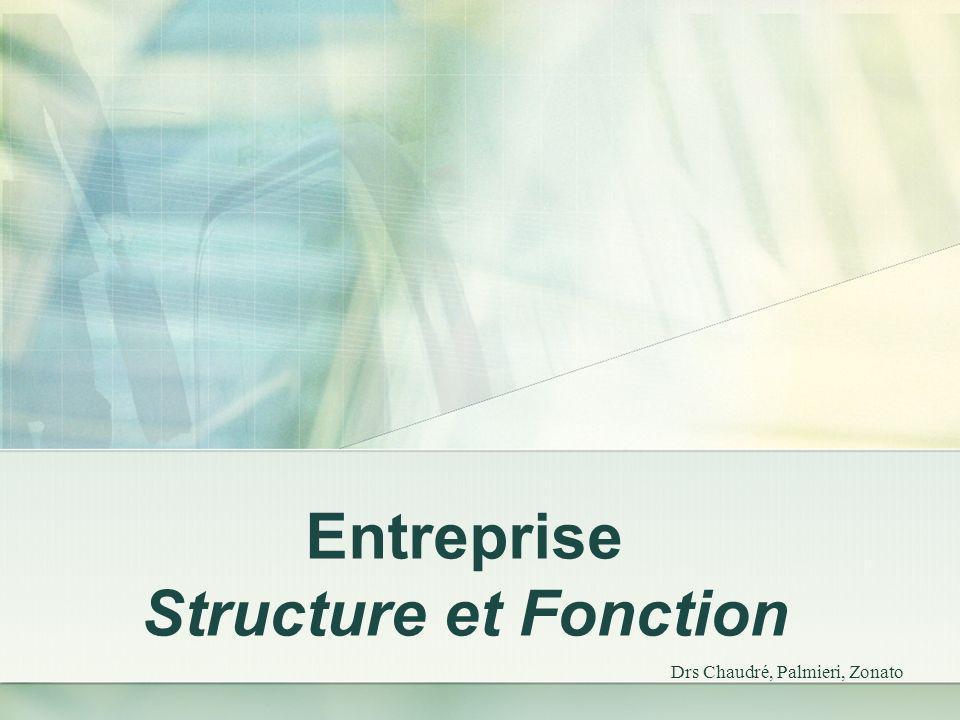 Entreprise Structure et Fonction Drs Chaudré, Palmieri, Zonato
