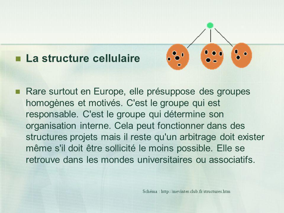 La structure cellulaire Rare surtout en Europe, elle présuppose des groupes homogènes et motivés. C'est le groupe qui est responsable. C'est le groupe
