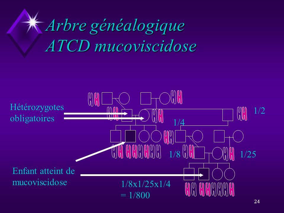 24 Arbre généalogique ATCD mucoviscidose Enfant atteint de mucoviscidose Hétérozygotes obligatoires 1/2 1/4 1/81/25 1/8x1/25x1/4 = 1/800