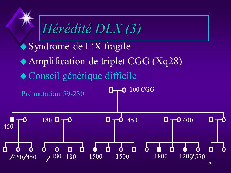 43 u Syndrome de l X fragile u Amplification de triplet CGG (Xq28) u Conseil génétique difficile Hérédité DLX (3) 100 CGG 180450400 1800 1500 1200180