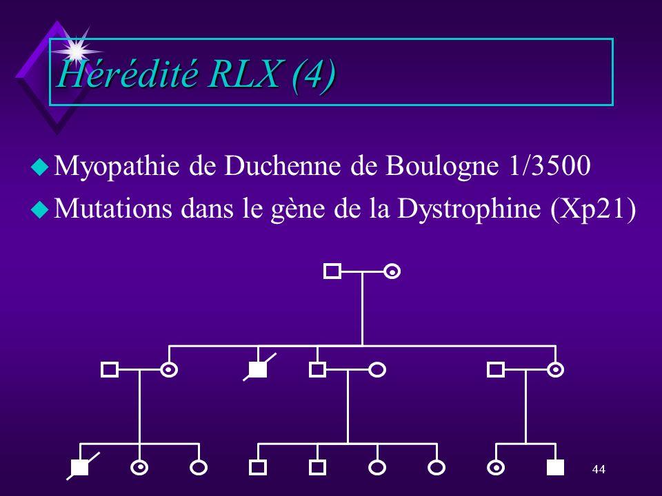 44 u Myopathie de Duchenne de Boulogne 1/3500 u Mutations dans le gène de la Dystrophine (Xp21) Hérédité RLX (4)
