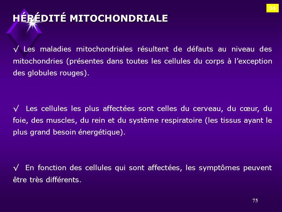 75 34 HÉRÉDITÉ MITOCHONDRIALE Les maladies mitochondriales résultent de défauts au niveau des mitochondries (présentes dans toutes les cellules du cor