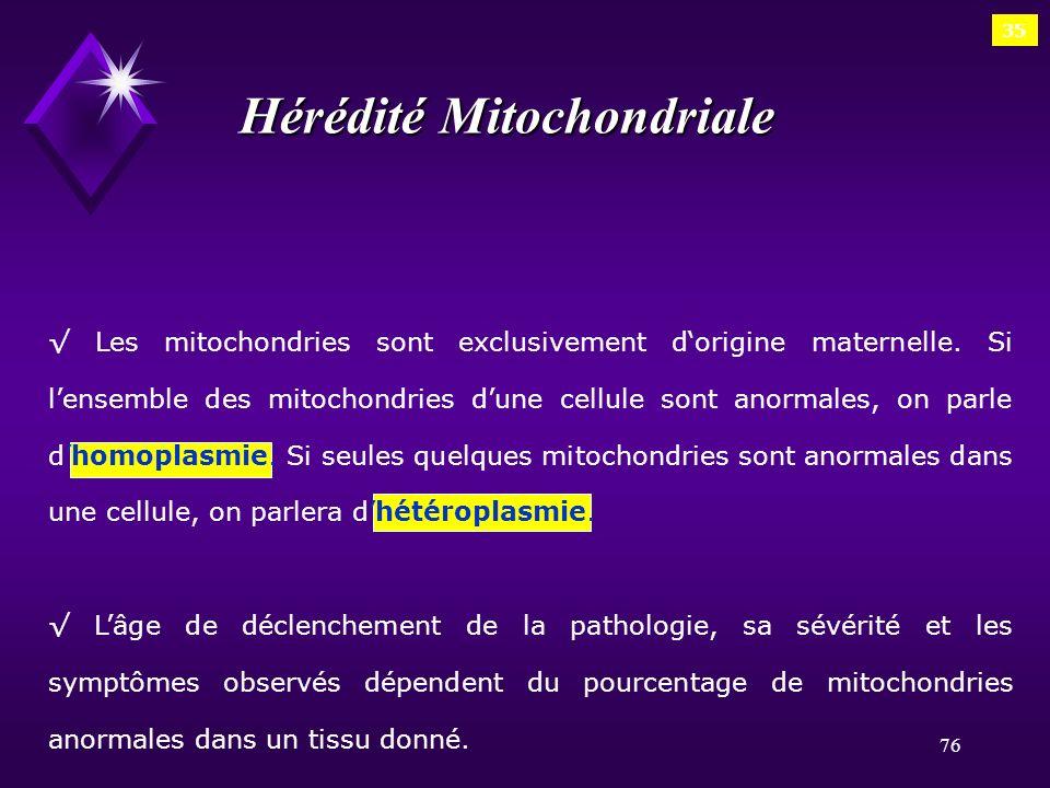 76 35 Hérédité Mitochondriale Les mitochondries sont exclusivement dorigine maternelle. Si lensemble des mitochondries dune cellule sont anormales, on