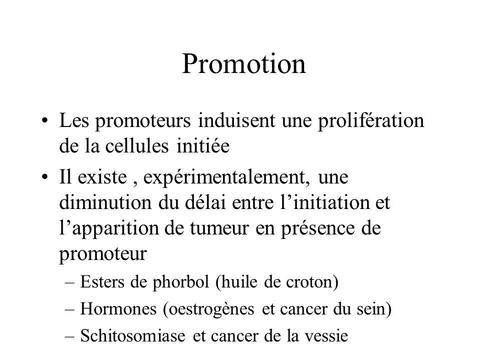 Promotion Les promoteurs induisent une prolifération de la cellules initiée Il existe, expérimentalement, une diminution du délai entre linitiation et