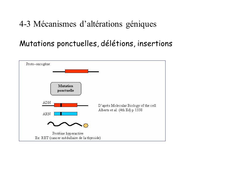4-3 Mécanismes daltérations géniques Mutations ponctuelles, délétions, insertions