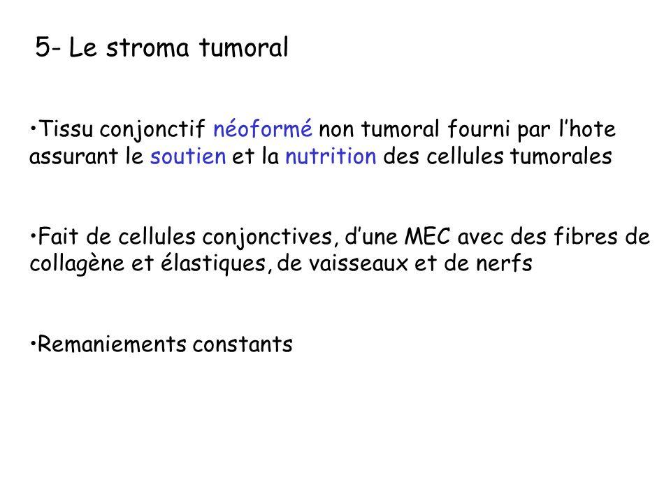 5- Le stroma tumoral Tissu conjonctif néoformé non tumoral fourni par lhote assurant le soutien et la nutrition des cellules tumorales Fait de cellule