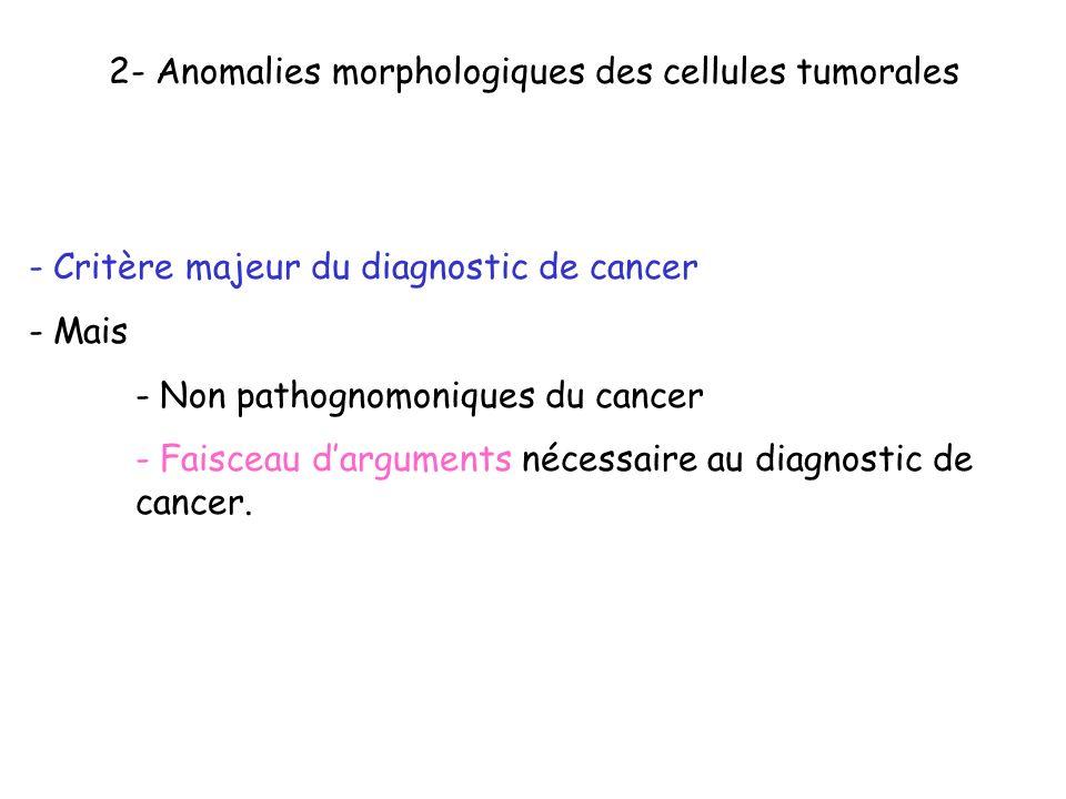 2- Anomalies morphologiques des cellules tumorales - Critère majeur du diagnostic de cancer - Mais - Non pathognomoniques du cancer - Faisceau dargume