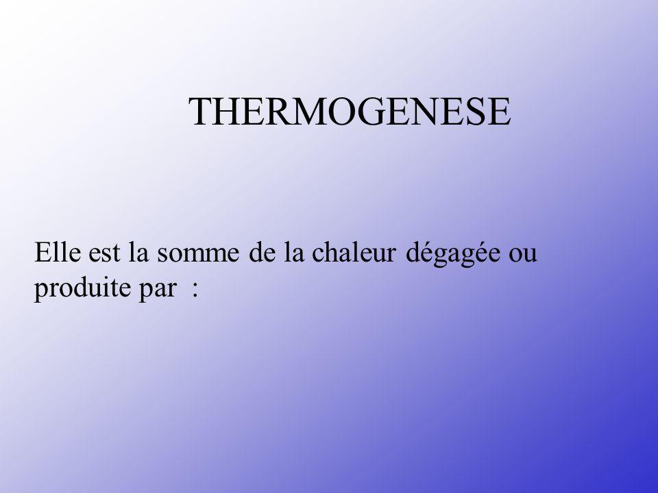 THERMOGENESE Elle est la somme de la chaleur dégagée ou produite par :