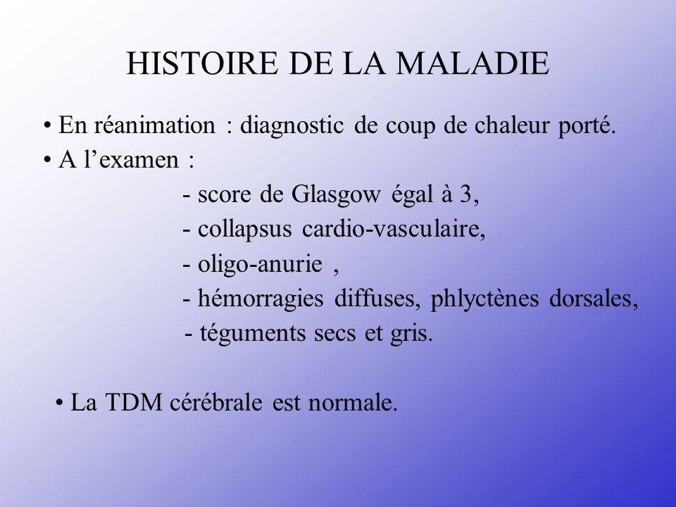 HISTOIRE DE LA MALADIE En réanimation : diagnostic de coup de chaleur porté. A lexamen : - score de Glasgow égal à 3, - collapsus cardio-vasculaire, -