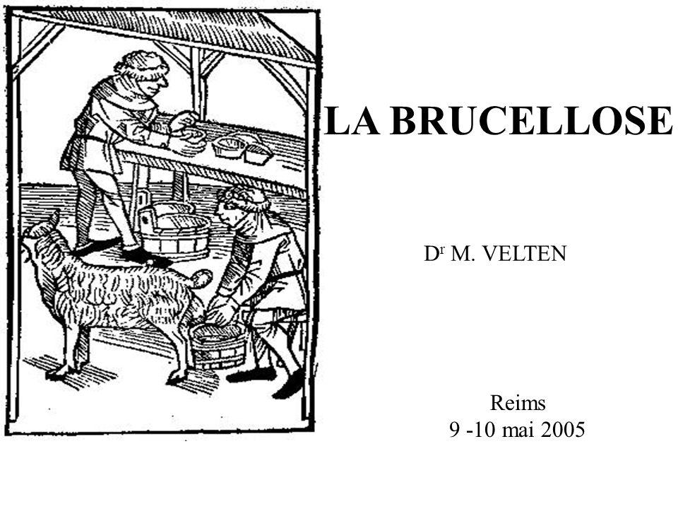 LA BRUCELLOSE Reims 9 -10 mai 2005 D r M. VELTEN