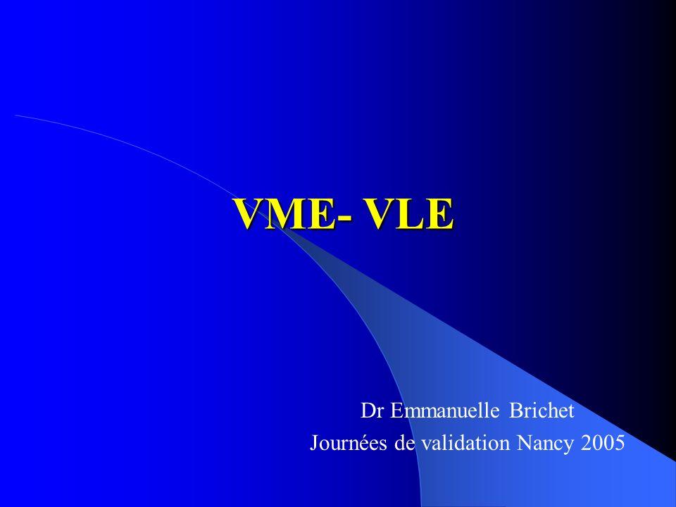 VME- VLE Dr Emmanuelle Brichet Journées de validation Nancy 2005