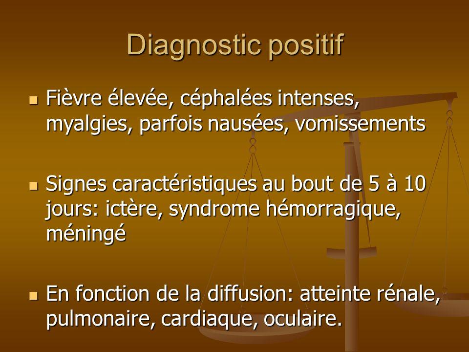 Formes cliniques FORME BENIGNE ANICTERIQUE PSEUDOGRIPPALE -syndrome infectieux isolé 3 à 7 jours, rémission de 1 à 3 jours, puis phase détat de 4 à 30 jours avec fièvre modérée, asthénie marquée -évolution sévère possible à tout moment, viscérale isolée ou polyviscérale