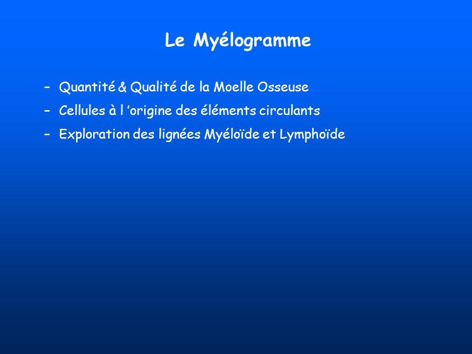 Le Myélogramme –Quantité & Qualité de la Moelle Osseuse –Cellules à l origine des éléments circulants –Exploration des lignées Myéloïde et Lymphoïde