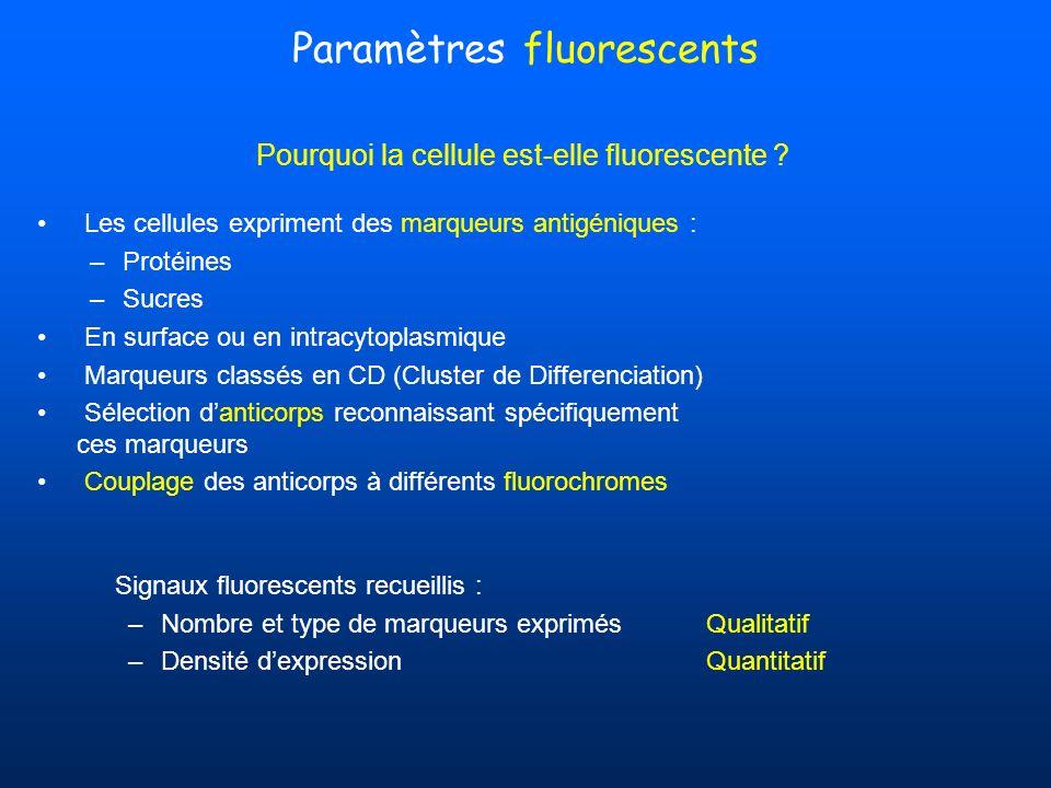 Paramètres fluorescents Pourquoi la cellule est-elle fluorescente ? Les cellules expriment des marqueurs antigéniques : –Protéines –Sucres En surface