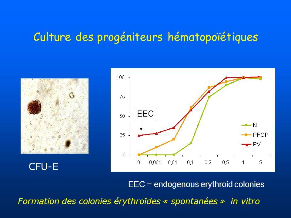 Culture des progéniteurs hématopoïétiques EEC EEC = endogenous erythroid colonies CFU-E Formation des colonies érythroïdes « spontanées » in vitro