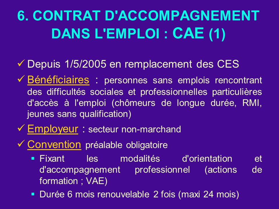 6. CONTRAT D'ACCOMPAGNEMENT DANS L'EMPLOI : CAE (1) Depuis 1/5/2005 en remplacement des CES Bénéficiaires : personnes sans emplois rencontrant des dif