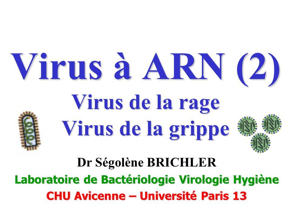 Virus à ARN (2) Virus de la rage Virus de la grippe Dr Ségolène BRICHLER Laboratoire de Bactériologie Virologie Hygiène CHU Avicenne – Université Pari