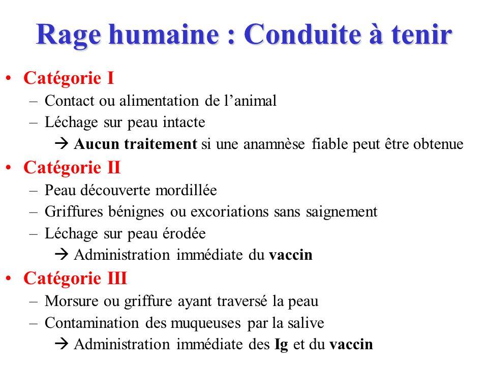 Rage humaine : Conduite à tenir Catégorie I –Contact ou alimentation de lanimal –Léchage sur peau intacte Aucun traitement si une anamnèse fiable peut