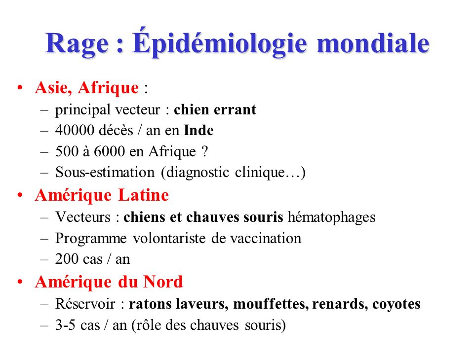 Rage : Épidémiologie mondiale Asie, Afrique : –principal vecteur : chien errant –40000 décès / an en Inde –500 à 6000 en Afrique ? –Sous-estimation (d