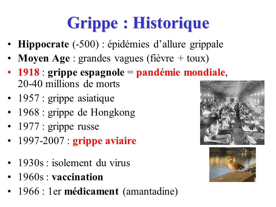 Grippe : Historique Hippocrate (-500) : épidémies dallure grippale Moyen Age : grandes vagues (fièvre + toux) 1918 : grippe espagnole = pandémie mondi