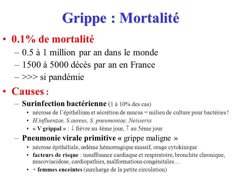 Grippe : Mortalité 0.1% de mortalité –0.5 à 1 million par an dans le monde –1500 à 5000 décès par an en France –>>> si pandémie Causes : –Surinfection