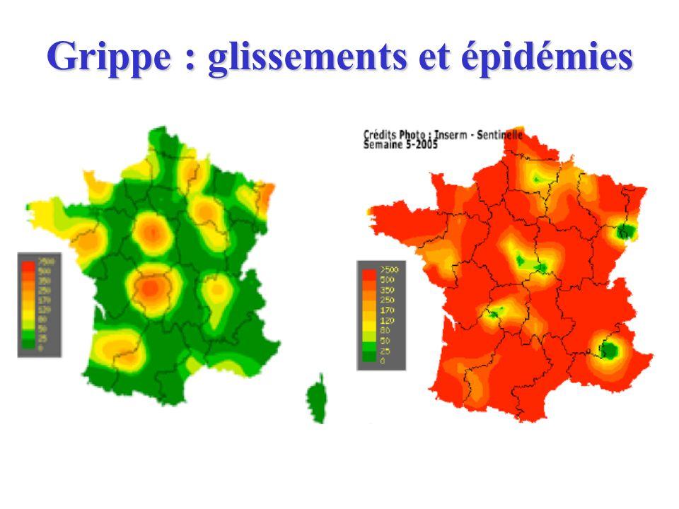 Grippe : glissements et épidémies