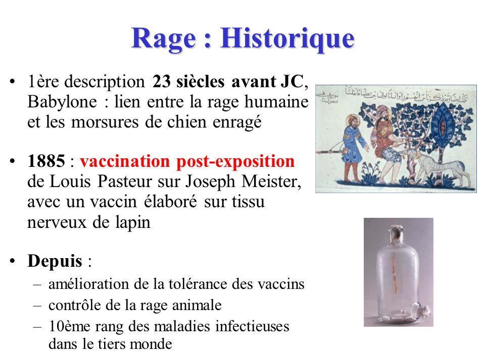 Rage : Historique 1ère description 23 siècles avant JC, Babylone : lien entre la rage humaine et les morsures de chien enragé 1885 : vaccination post-