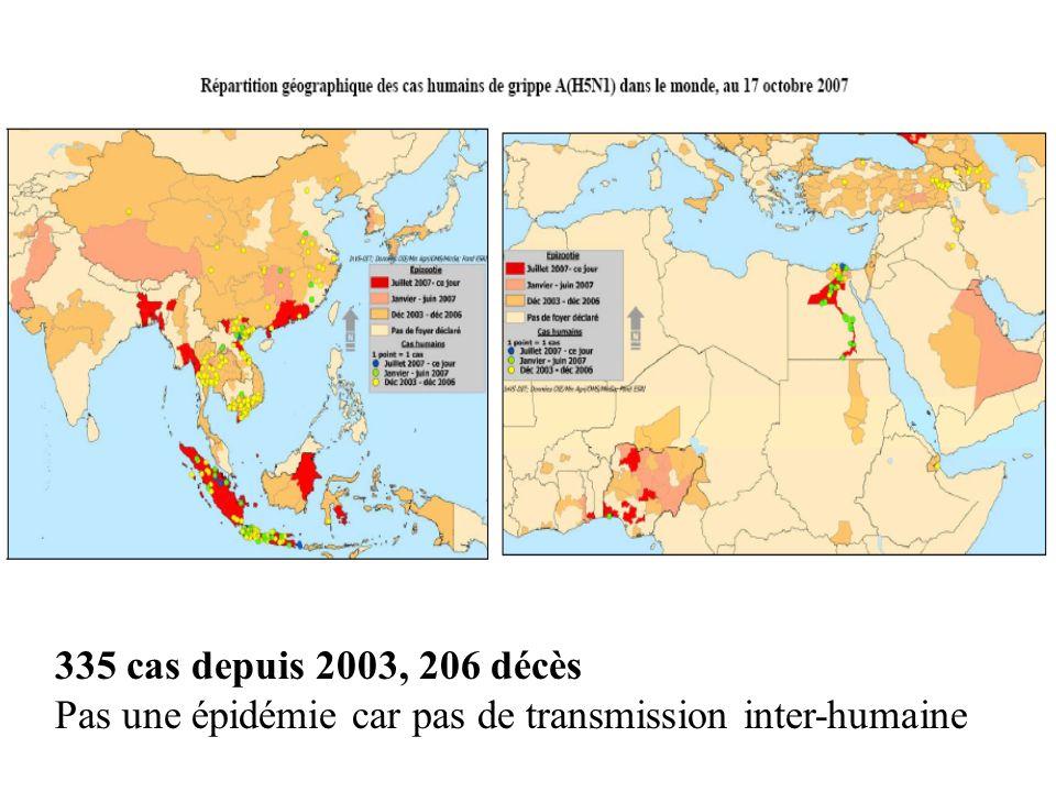 335 cas depuis 2003, 206 décès Pas une épidémie car pas de transmission inter-humaine
