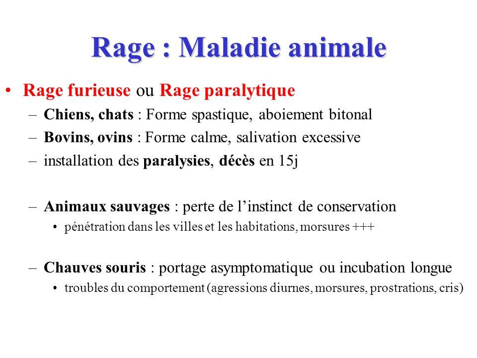 Rage : Maladie animale Rage furieuse ou Rage paralytique –Chiens, chats : Forme spastique, aboiement bitonal –Bovins, ovins : Forme calme, salivation