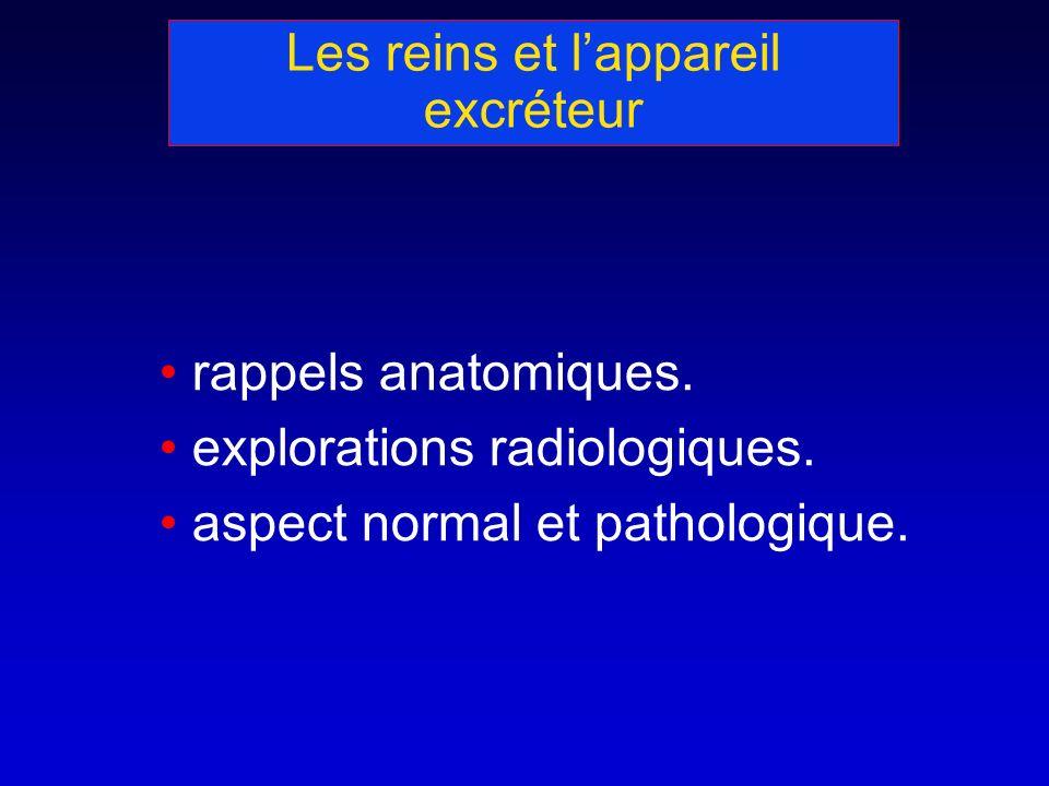 Les reins et lappareil excréteur rappels anatomiques. explorations radiologiques. aspect normal et pathologique.