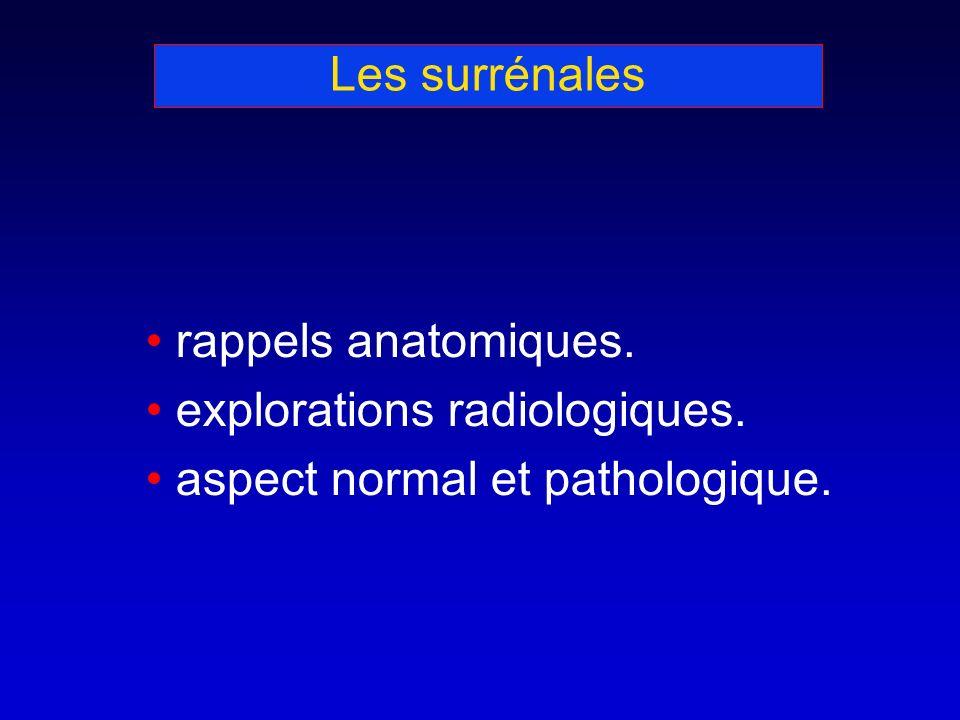 Les surrénales rappels anatomiques. explorations radiologiques. aspect normal et pathologique.