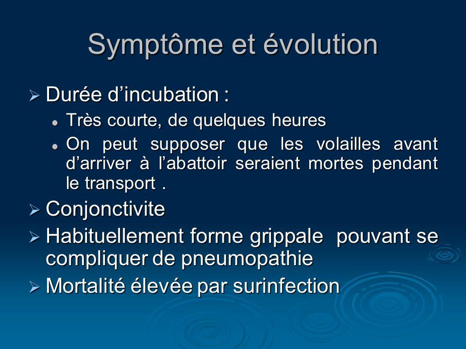Symptôme et évolution Durée dincubation : Durée dincubation : Très courte, de quelques heures Très courte, de quelques heures On peut supposer que les